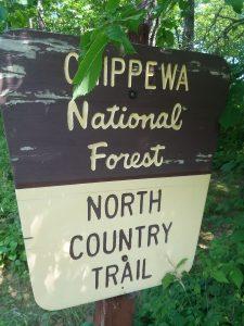 Chippewa National Forest